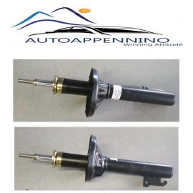 Ammortizzatore anteriore sx/dx Ford Fiesta 1133913